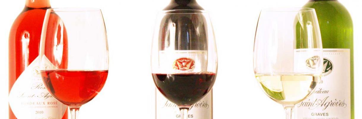 Bordeaux photographies château viticole